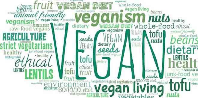 vegan-2